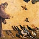 San Francesco d'Assisi, il Santo che continua a rivoluzionare la Chiesa