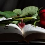 San Valentino, le 10 citazioni letterarie romantiche più belle tratte dai libri