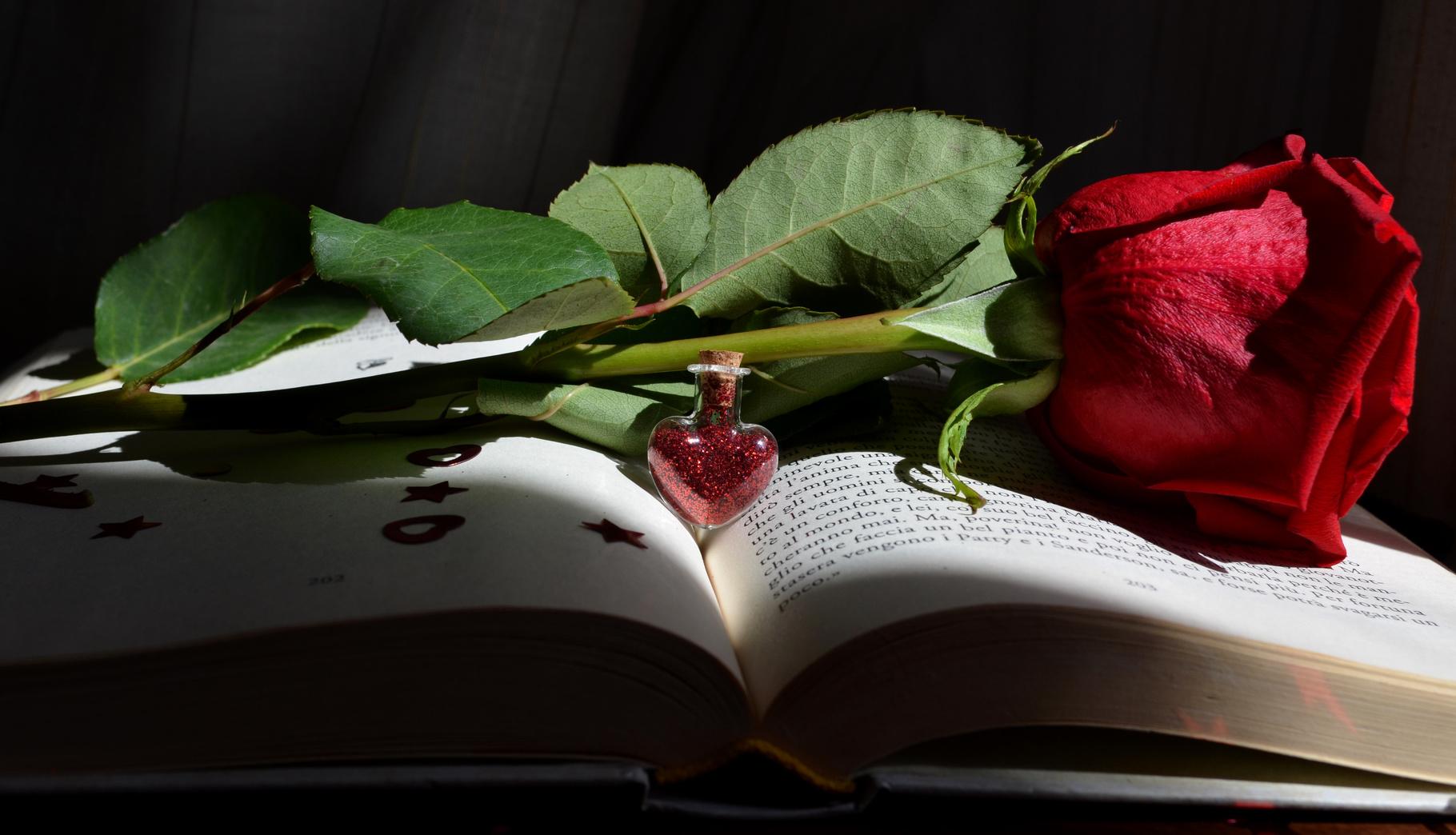 san valentino le 10 citazioni letterarie romantiche pi. Black Bedroom Furniture Sets. Home Design Ideas