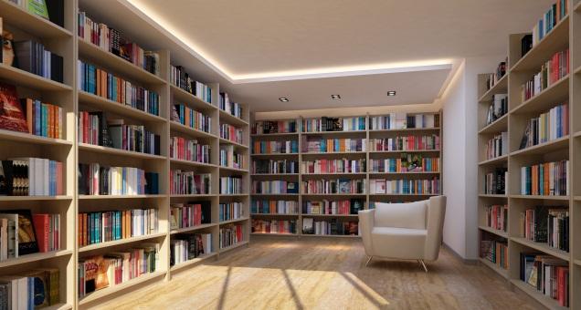 come organizzare la propria libreria di casa in modo