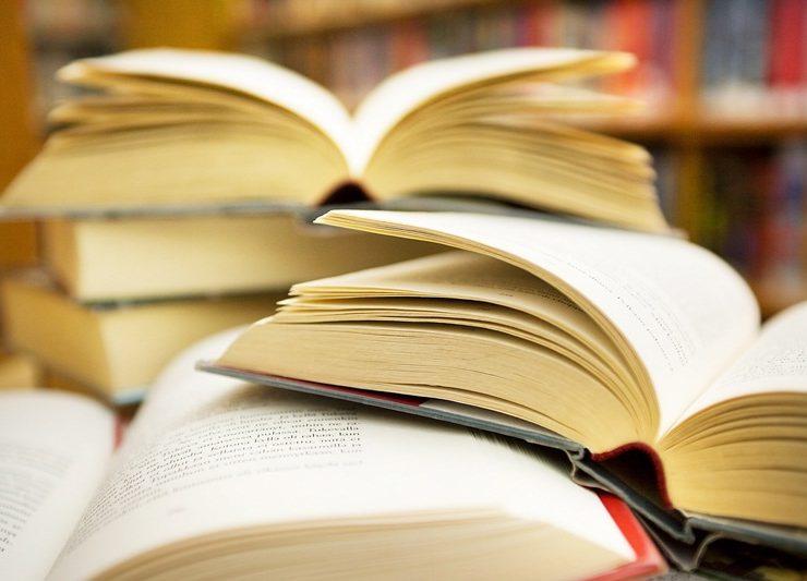 Erri De Luca, la TAV e altri fomentatori letterari