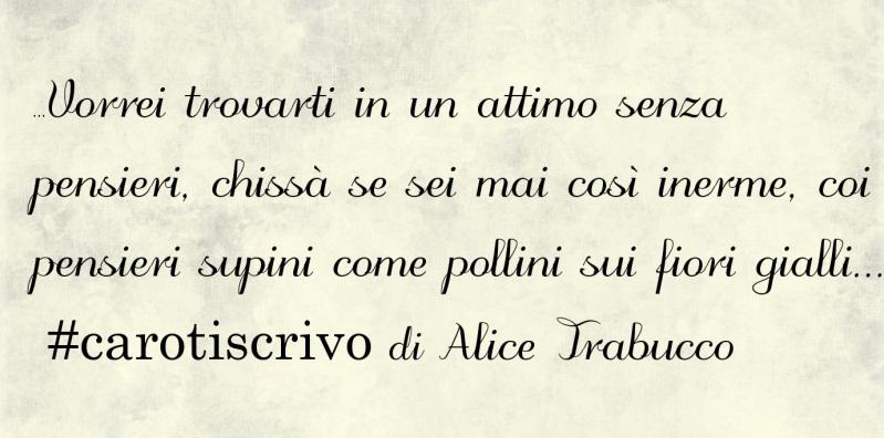 Lettera d'amore di Alice Trabucco