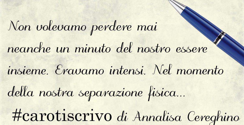 Lettera di Annalisa Cereghino
