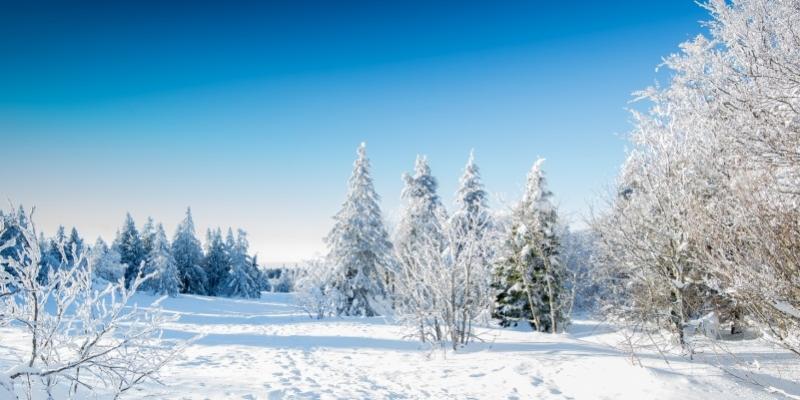 Gli aforismi più celebri dedicati all'inverno