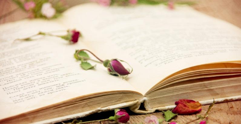 Libri usati: una passione! Quanti di voi amano spulciare tra i libri usati nei mercatini? Ci si possono trovare dentro dei piccoli tesori