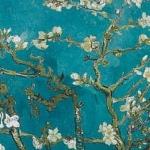 Primavera, miti e leggende sul primo giorno della stagione della rinascita