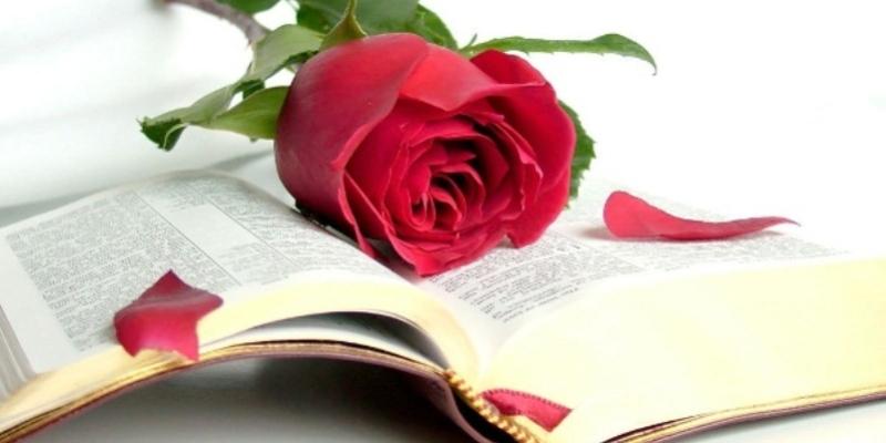 Giornata Mondiale del Libro, le origini della festa dei libri e della lettura