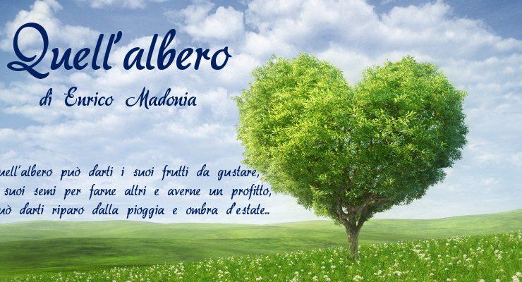 Quell'albero - di Enrico Madonia