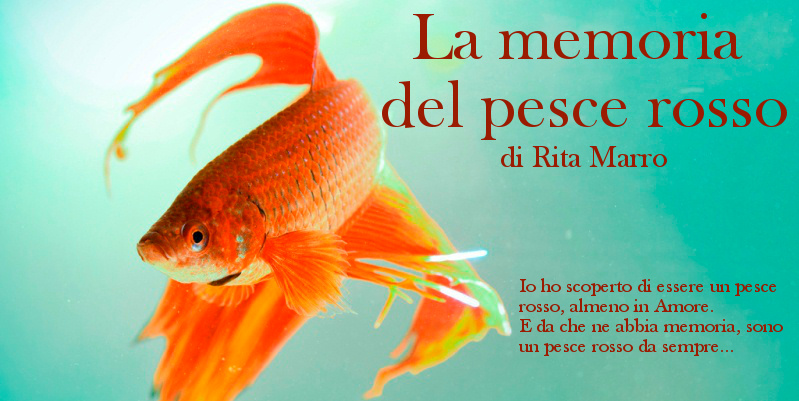 La memoria del pesce rosso - di Rita Marro