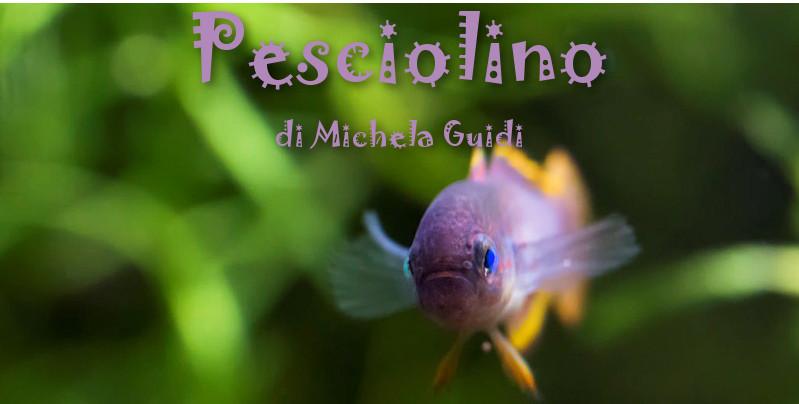 Pesciolino - di Michela Guidi