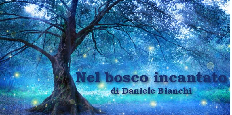 Nel bosco incantato - racconto di Daniele Bianchi