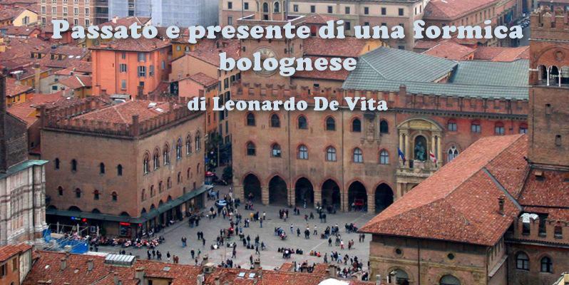 Passato e presente di una formica bolognese - racconto di Leonardo De Vita