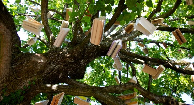 Passalibro, il bookcrossing di successo a Treviso