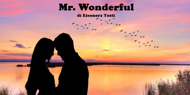 Mr. Wonderful - racconto di Eleonora Tosti