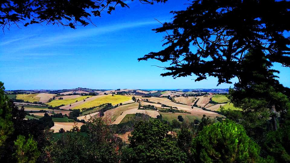 Vista dell'entroterra marchigiano - Foto di Chiara Giacobelli