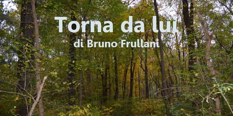 Torna da lui - racconto di Bruno Frullani