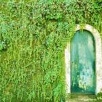 Le porte artistiche più belle al mondo | Sintra, Lisbona, Portugallo - Image credits: Amaury Henderick