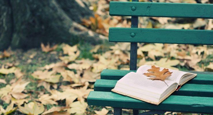 La lettura: confronto costante