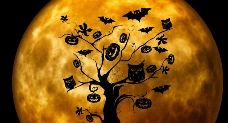 Dimmi che segno sei e ti dirò che libro horror leggere a Halloween