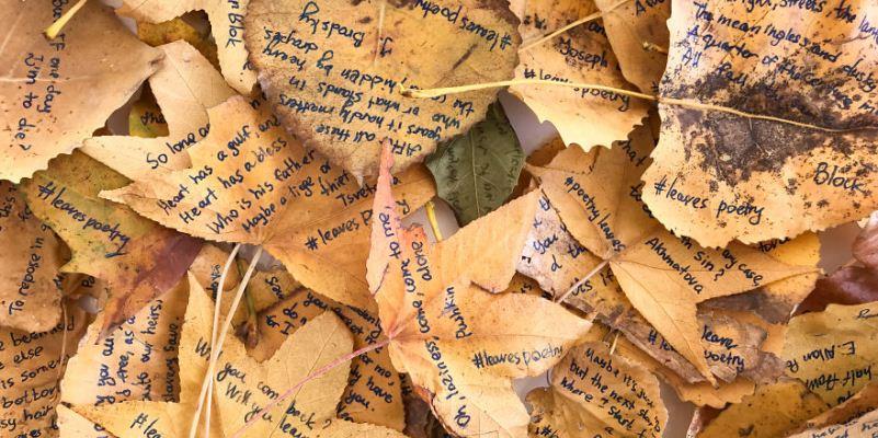 La giovane artista che ha scritto poesie sulle foglie dei parchi di New York