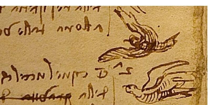 """""""Leonardo e il volo"""", il genio rinascimentale in mostra a Roma"""