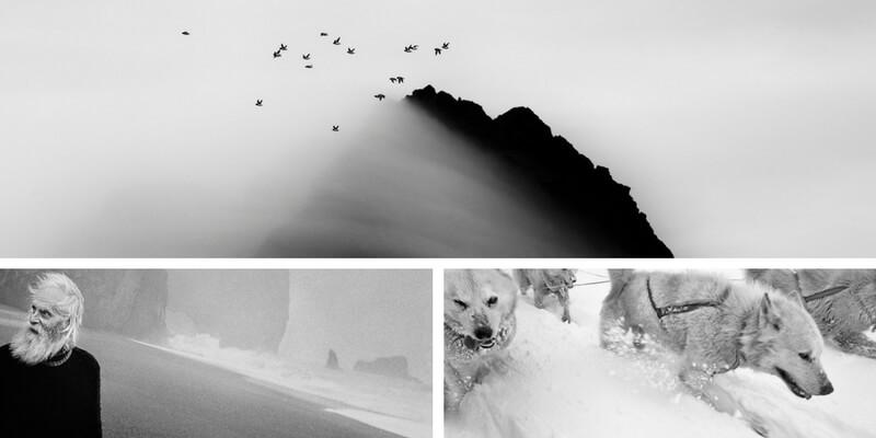 Venezia, 120 fotografie raccontano l'Artico