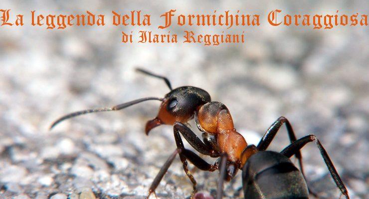 La leggenda della Formichina Coraggiosa - racconto di Ilaria Reggiani