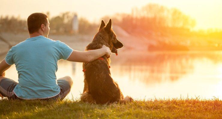 La bellezza di avere un cane e ciò che ci insegnano