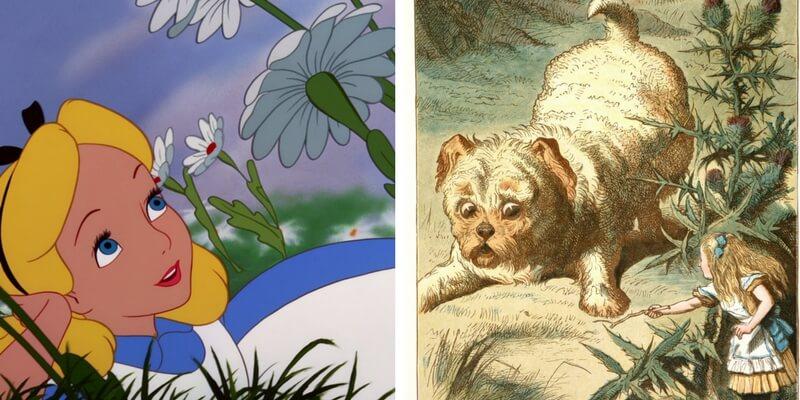 Alice nel Paese delle Meraviglie, ecco le differenze fra film e libro