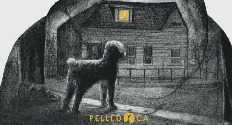 Nasce Pelledoca, la nuova casa editrice che pubblica gialli per ragazzi