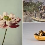 Arte e fotografia celebrano il Giappone al Museo Poldi Pezzoli di Milano
