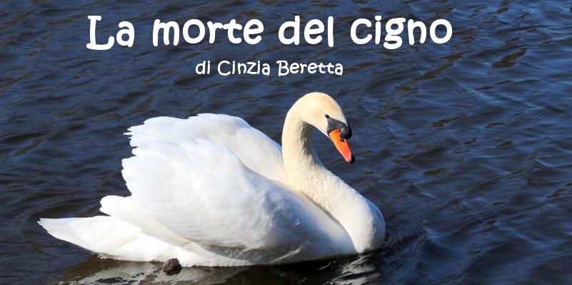 La morte del cigno - racconto di Cinzia Beretta