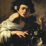 Dentro Caravaggio | Caravaggio - Fanciullo morso da un ramarro, 1596-1597