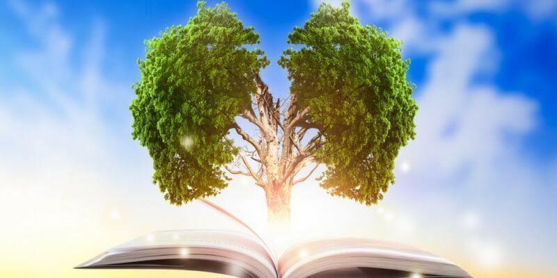 I libri da leggere che trattano la questione ambientale
