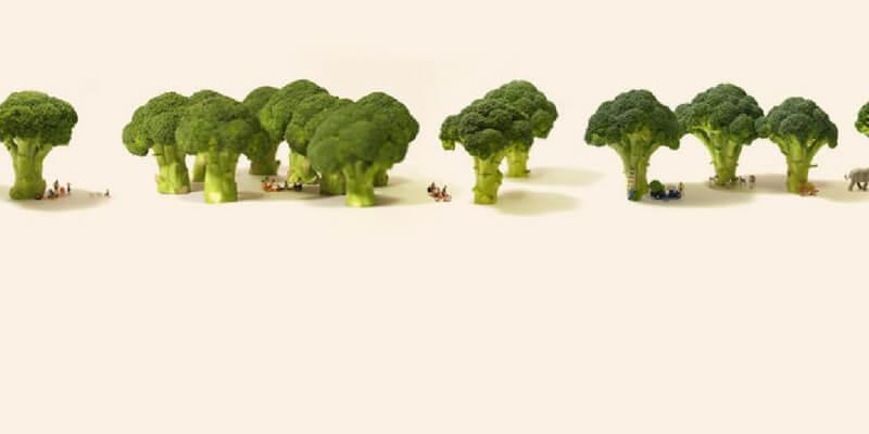 Le ambientazioni in miniatura dell'artista giapponese Tatsuya Tanaka