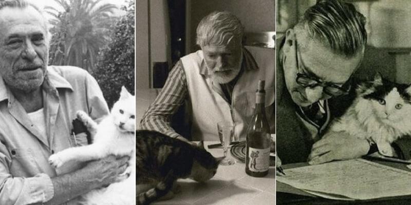 Scrittori e gatti, da Baudelaire a Bukowski