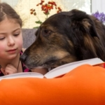 Pet Therapy, i cani lettori aiutano nell'apprendimento i bambini in difficoltà