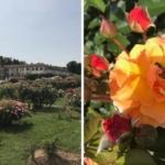 Monza omaggia Jane Austen nel bicentenario della sua morte