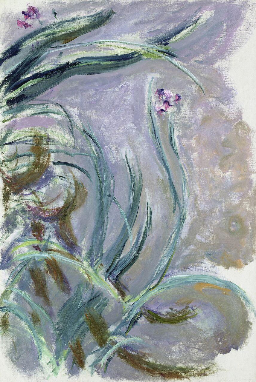 Claude Monet (1840-1926) Iris , 1924-1925 Olio su tela, 105x73 cm Parigi, Musée Marmottan Monet © Musée Marmottan Monet, paris c Bridgeman- Giraudon / presse