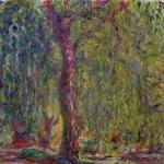 Claude Monet | Claude Monet (1840-1926)   Salice piangente  , 1918-1919   Olio su tela, 100x120 cm   Parigi, Musée Marmottan Monet   © Musée Marmottan Monet, paris c   Bridgeman-Giraudon / presse