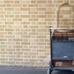 le 15 caratteristiche che accomunano i fan di Harry Potter