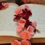 Le frasi d'amore più belle tratte dalla letteratura