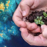 Giornata mondiale della Terra, gli aforismi per celebrare il pianeta