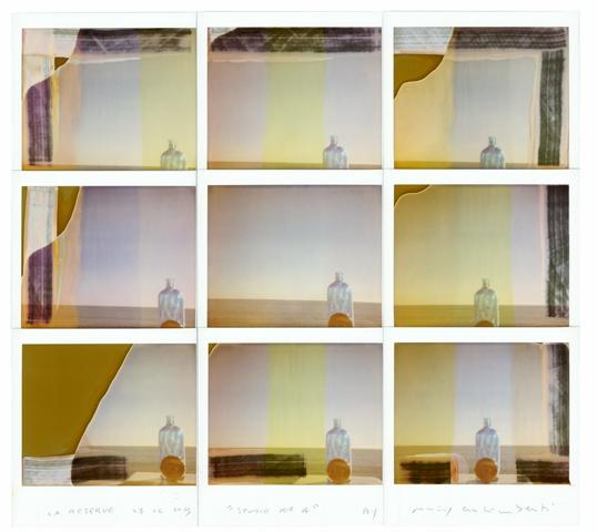 Maurizio Galimberti - Studio n.4 BotForchBic , La Reserve, 2013 (1)