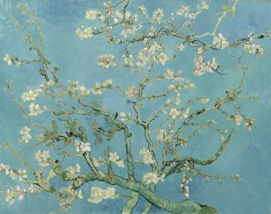 Ramo di mandorle in fiore