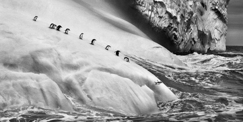 L'importanza di salvaguardare il pianeta nelle fotografie di Sebastião Salgado