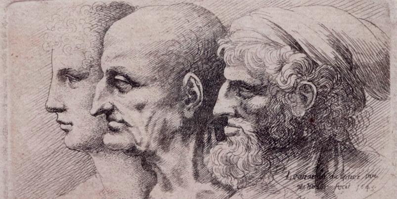 Leonardo disegnato da Hollar, la mostra a Vinci