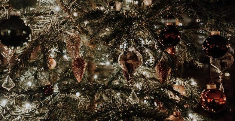 I libri che ogni lettore vorrebbe trovare sotto l'albero di Natale
