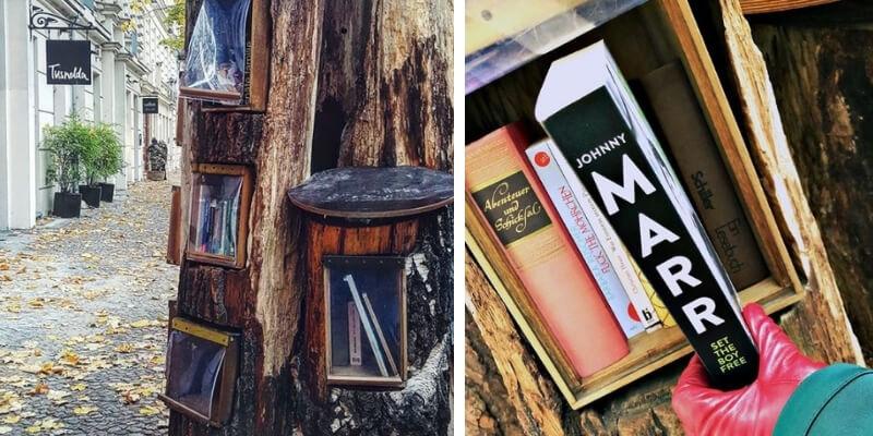A Berlino esiste una libreria costruita dentro tronchi d'albero