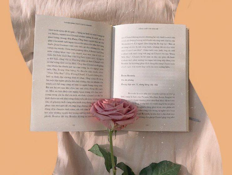 frasi-damore-dai-libri